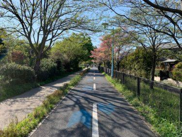 気持ちのいい サイクリングロード 多摩湖自転車歩行者道 走破レポート!